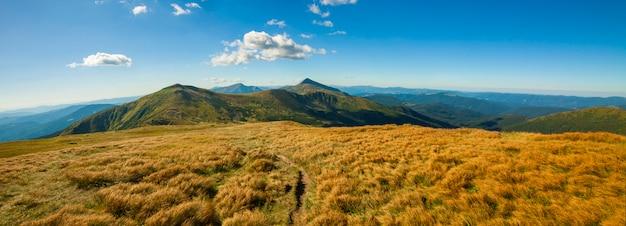 Panorama des montagnes des carpates en journée ensoleillée d'été.