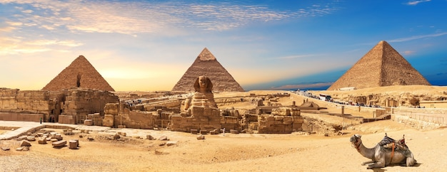 Panorama des pyramides de gizeh et du sphinx avec un chameau allongé, le caire, egypte.