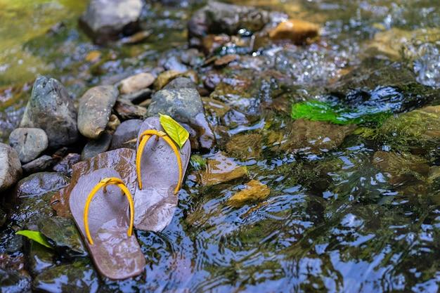 Des pantoufles ont été placées sur le rocher dans l'eau