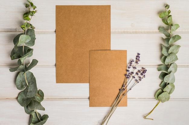 Papeterie en blanc avec des feuilles et du carton