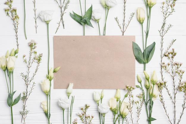 Papier au milieu de la composition des plantes