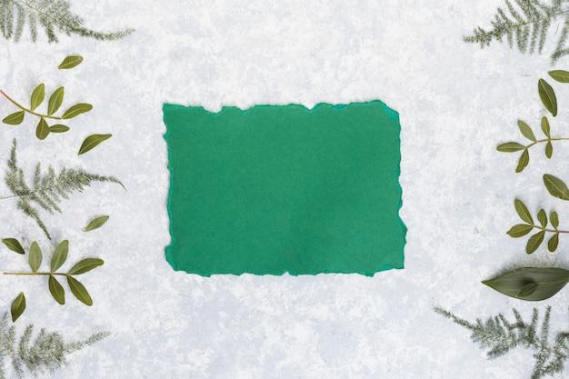 Papier blanc avec des branches de plantes sur la table