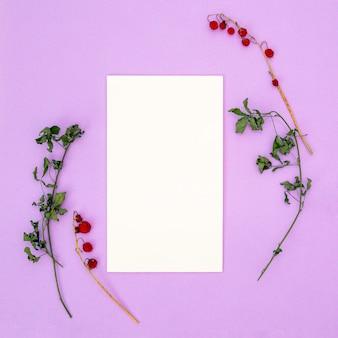 Papier blanc vierge modèle de baies rouges séchées sur une branche et des feuilles vertes sur une branche sur un fond rose. automne, concept de l'automne. lay plat, vue de dessus, surface, carré