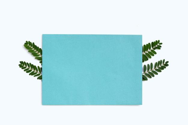 Papier bleu avec des feuilles vertes sur fond blanc.