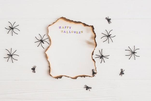 Papier brûlant près des araignées ornementales