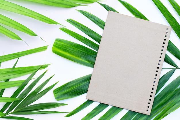 Papier brun blanc avec des feuilles vertes sur fond blanc.