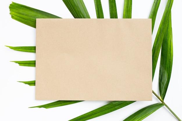 Papier brun vierge sur des feuilles de palmier tropical sur blanc. copier l'espace