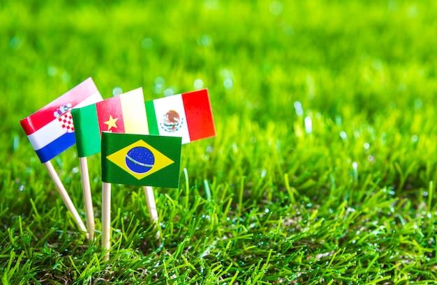 Papier couper des drapeaux sur l'herbe pour le championnat de football 2014