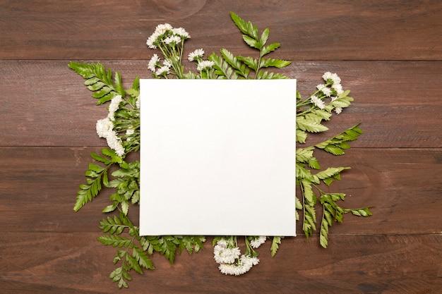 Papier entouré de feuilles vertes