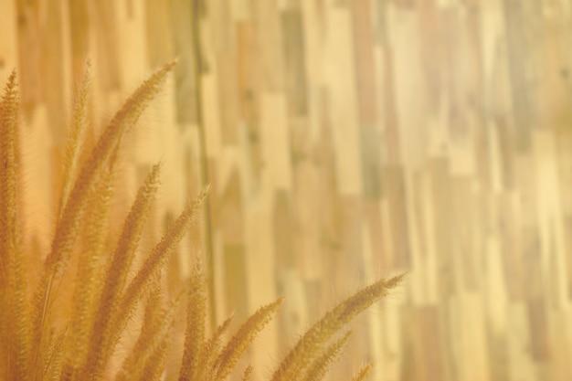 Papier peint sur le mur en bois