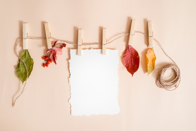 Papier pour vos notes. tendance de papier déchiré. feuilles d'automne dans une corde à linge tenue par des pinces à linge. baies de sureau et d'épine-vinette, fruits et feuilles sèches. carte d'automne, plat poser, vue de dessus. fond