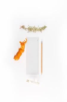 Papier près de crayons, de brindilles de conifères et de broussailles