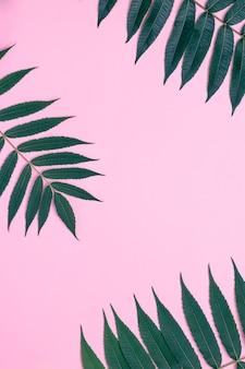 Papier rose avec branche de palmier et feuilles