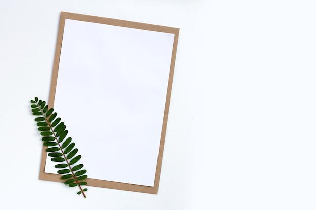 Papier vierge avec feuille verte sur blanc