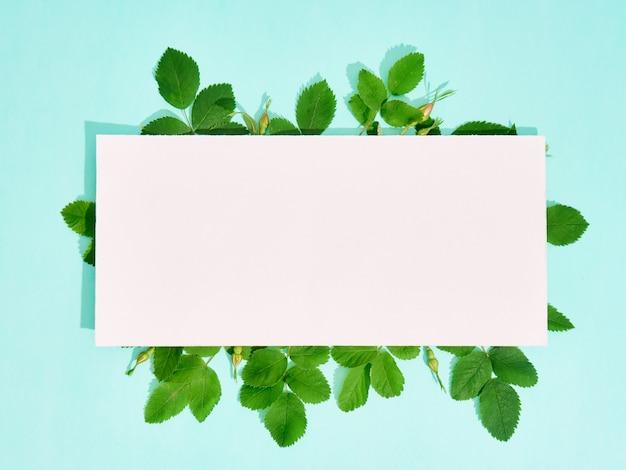 Papier vierge pour texte avec cadre de fleurs roses sauvages sur fond bleu.