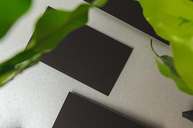 Papiers noirs avec des feuilles