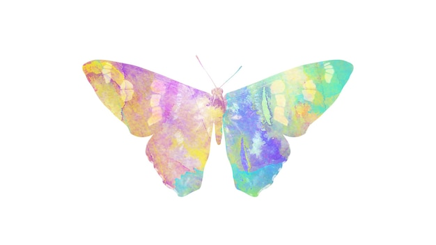 Papillon aquarelle multicolore. insecte tropical pour la conception. isolé sur fond blanc
