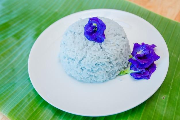 Papillon riz