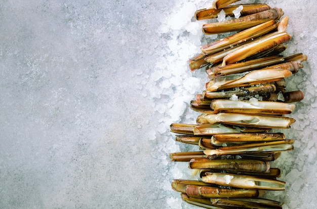 Paquet, tas de palourdes fraîches sur la glace, fond de béton gris. espace copie, vue de dessus, bannière.