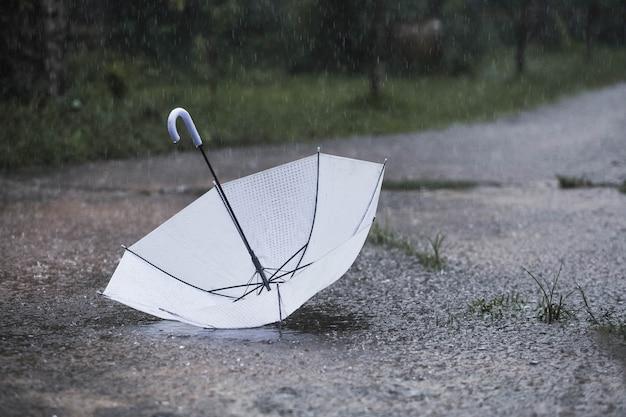 Parapluie blanc sous la pluie
