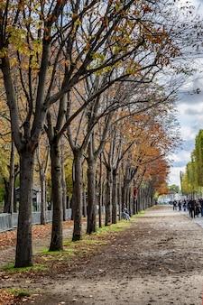 Parc d'automne avec des feuilles jaune-rouge et une allée piétonne.