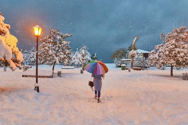 Parc de conte de fées enchanteur d'hiver avec des flocons de neige volants