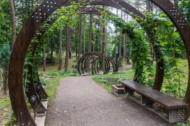 Un parc forestier avec de grands arbres et des bancs et des arches créatives.