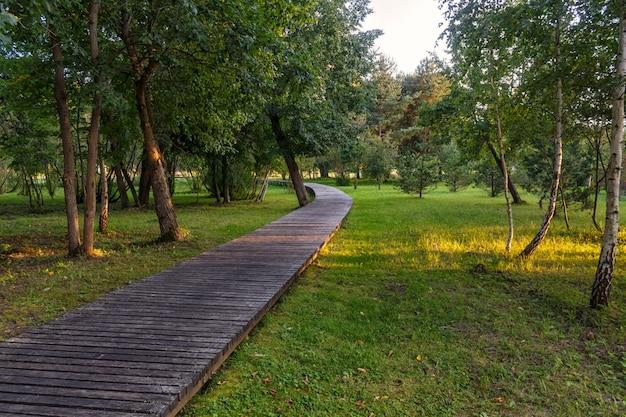 Un parc forestier avec de grands arbres