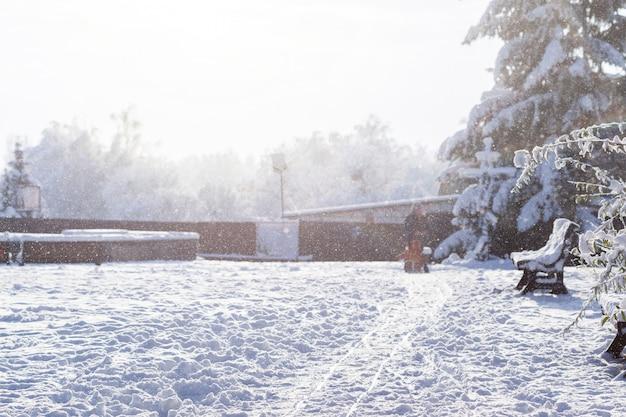 Parc d'hiver magnifique matin. flocons de neige.