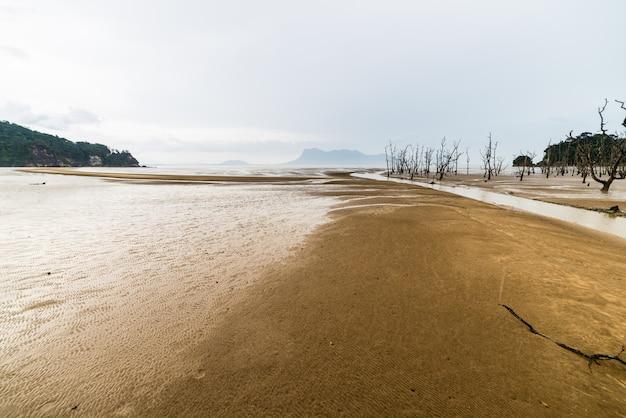 Parc national de bako, paysage de bornéo, malaisie