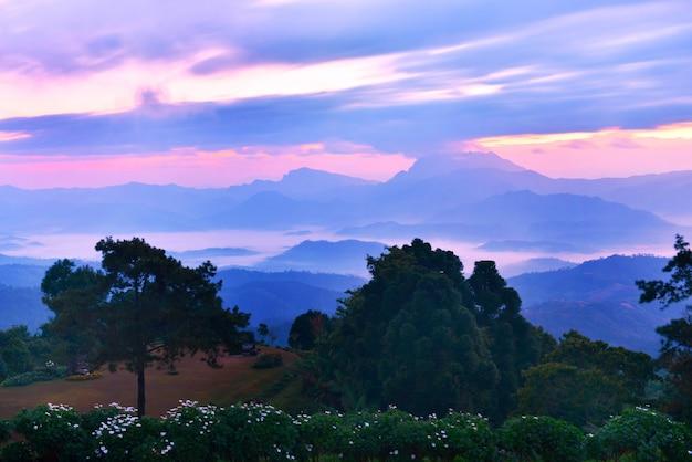Parc national de huai nam dang, chiang mai, thaïlande
