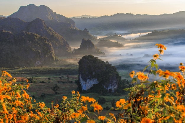 Parc national de phu langka dans la province de phayao