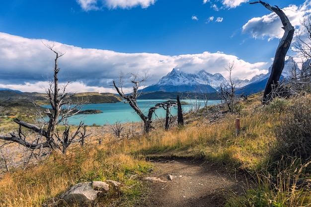 Parc national torres del paine, patagonie, chili, lac pehoe.