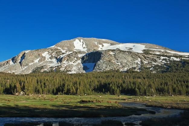 Parc national de yosemite en californie, états-unis