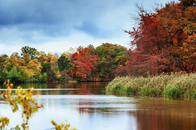 Parc paysager d'automne avec rivière et ciel bleu