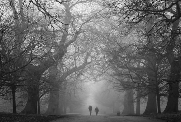 Un parc sombre et effrayant avec deux personnes au loin