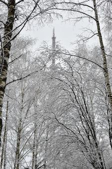Parc urbain en hiver dans la neige