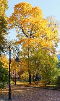 Parc de la ville d'automne avec feuillage et lampes d'arbres dorés.
