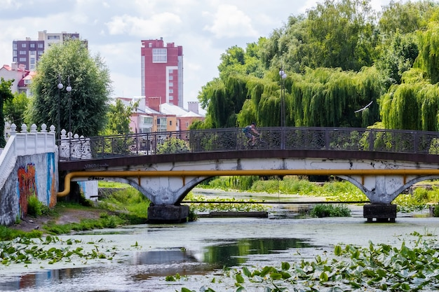 Parc de la ville avec rivière et pont en été