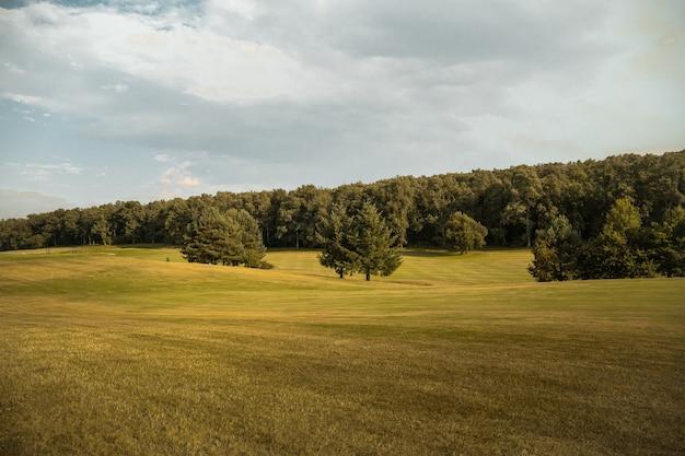 Parcours de golf vert en espagne avec forêt