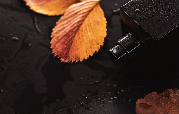 Parfum et feuilles jaunes sur fond humide