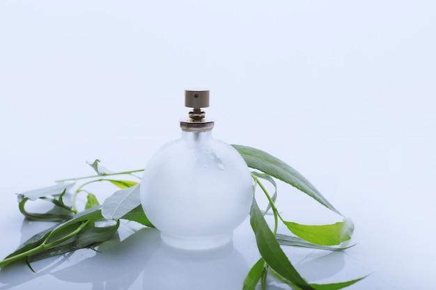 Parfum et feuilles vertes