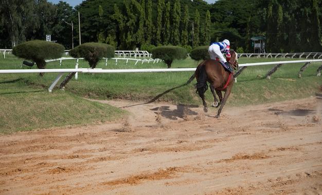 Pari de course de chevaux