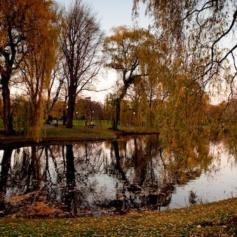 Park à boston, massachusetts, états-unis