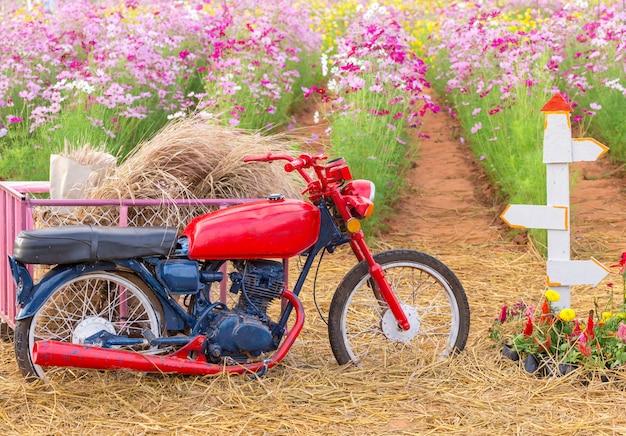 Parking moto dans un champ de fleurs