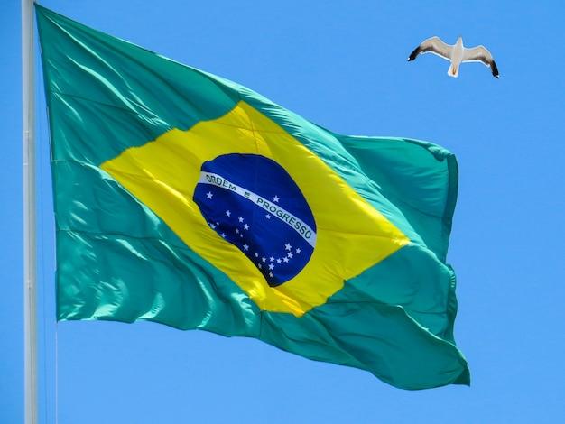 Une partie du drapeau brésilien avec l'ordre et la progression des mots du ciel défocalisé