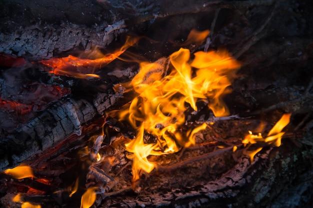 Une partie du feu de camp de nuit