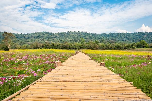 Passerelle en bambou sur les champs de fleurs avec des montagnes et des cieux