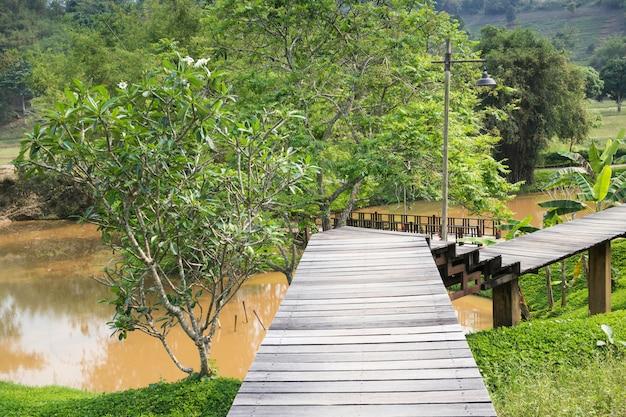 Passerelle en bois au jardin tropical