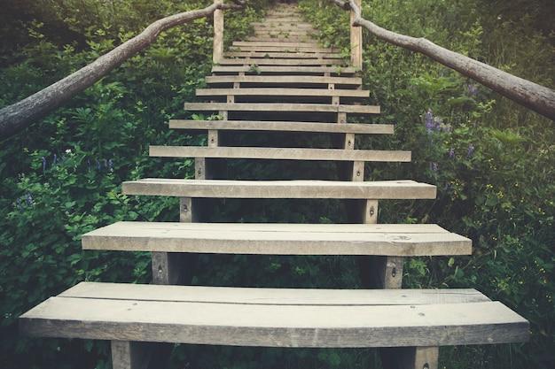 La passerelle en bois dans les parcs verts extérieurs